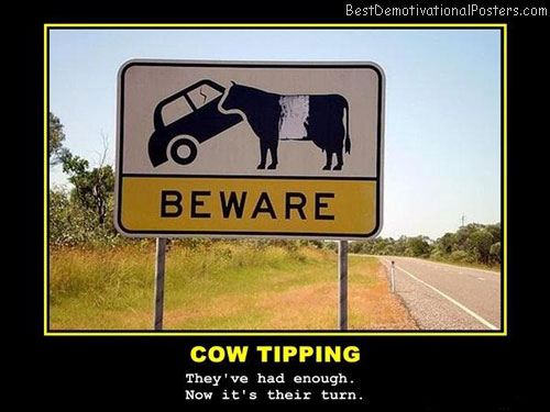 cow-tipping-sign-best-demotivational-poster