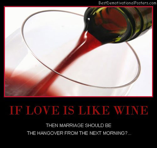 dilemma-love-like-wine-hangover-best-demotivational-posters