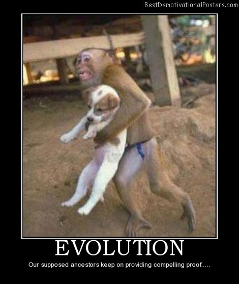 evolution-evolution-ancestors-proof-dog-monkey-best-demotivational-posters