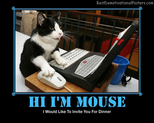 hi i'm mouse best-demotivational-posters