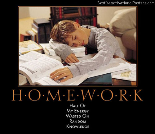 homework-half-energy-wasted-random-knowledge-best-demotivational-posters
