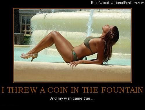 i-threw-a-coin-in-the-fountain-wish-best-demotivational-posters