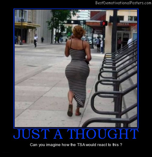 just-thought-tsa-reaction-booty-best-demotivational-posters