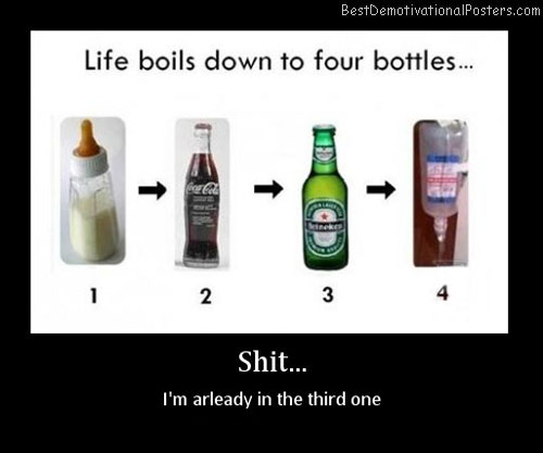 life boils down to four bottles best demotivational poster