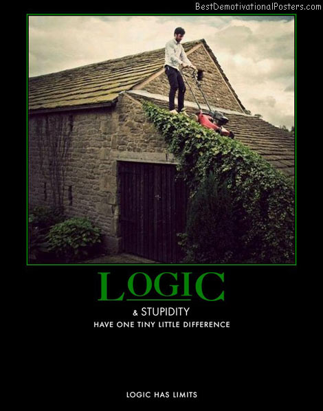 Logic And Stupidity