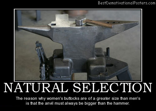 natural-selection-hammer-anvil-best-demotivational-posters