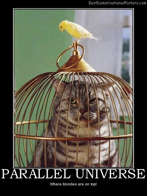 parallel-universe-cat-bird-cage-top-best-demotivational-posters