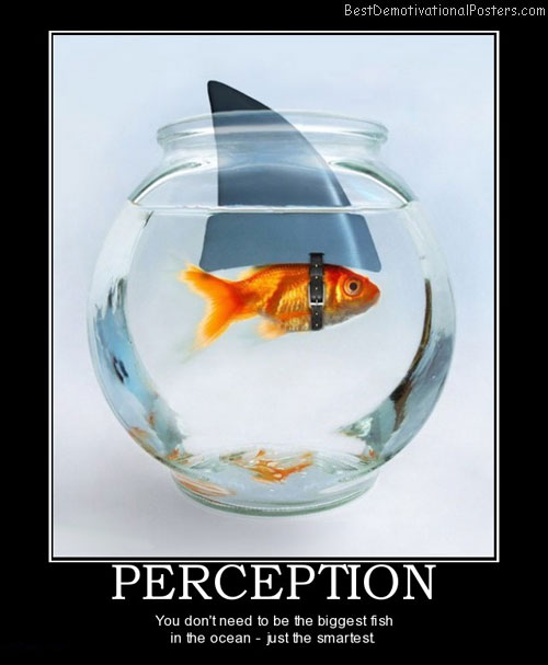 perception-smart-fish-best-demotivational-posters