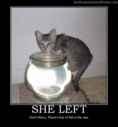 She left cat fish funny best demotivational posters