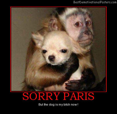 sorry-paris-dog-my-bitch-best-demotivational-posters