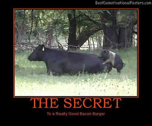 the-secret-burger-bacon-best-demotivational-posters
