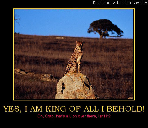yes-i-am-king-of-all-i-behold-lion-best-demotivational-posters