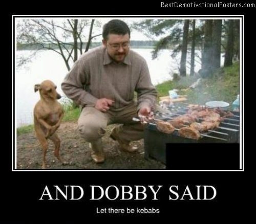 dobby said kebabs best demotivational posters