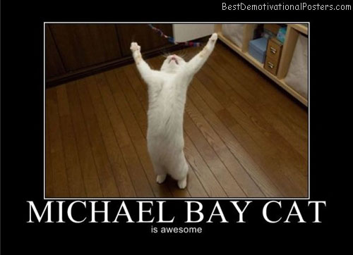 michael bay cat awesome best-demotivational-posters