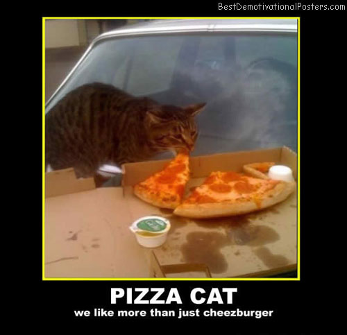 pizza cat best-demotivational-posters