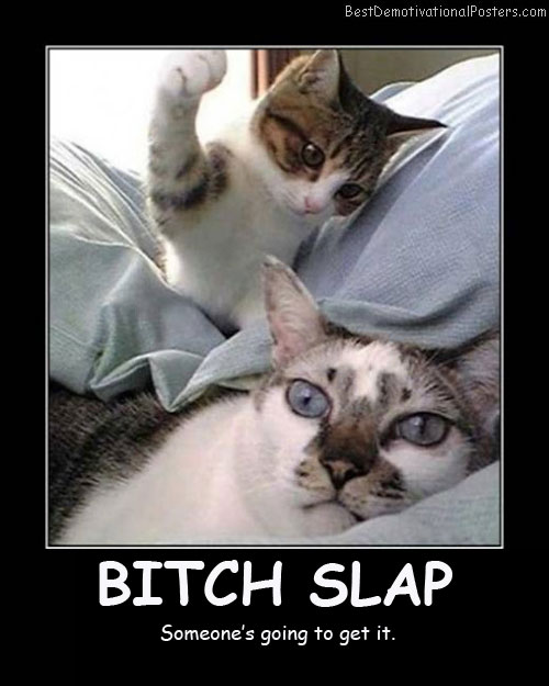 Bitch Slap Best Demotivational Posters