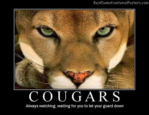 Cougar Best Demotivational Posters