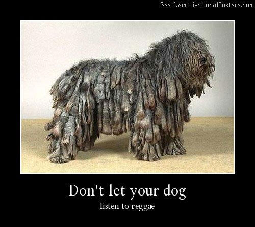 Reggae Dog Demotivational Poster
