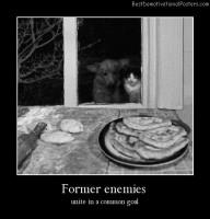 Former Enemies