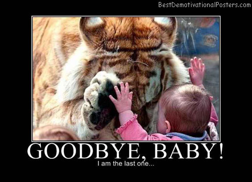 Goodbye, Baby Tiger Demotivational Poster