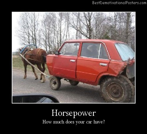 Horsepower Funny Demotivational Poster