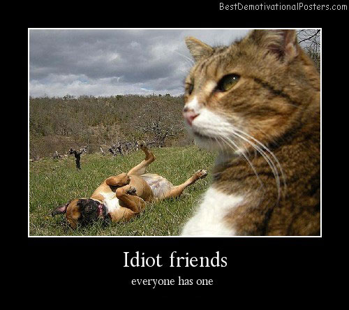 Idiot Friends Best Demotivational Posters