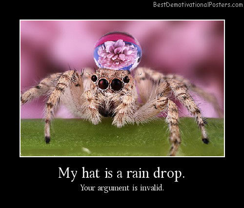 Rain Drop spider Demotivational Poster