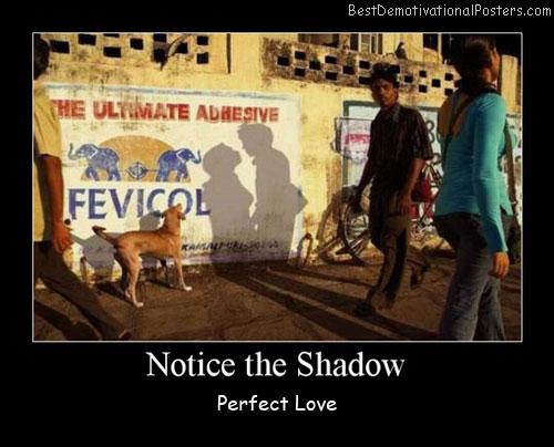 Notice The Shadow Best Demotivational Posters