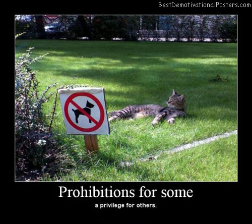 Prohibitions For Some Best Demotivational Posters