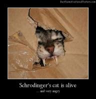 Schrodinger's Cat Is Alive