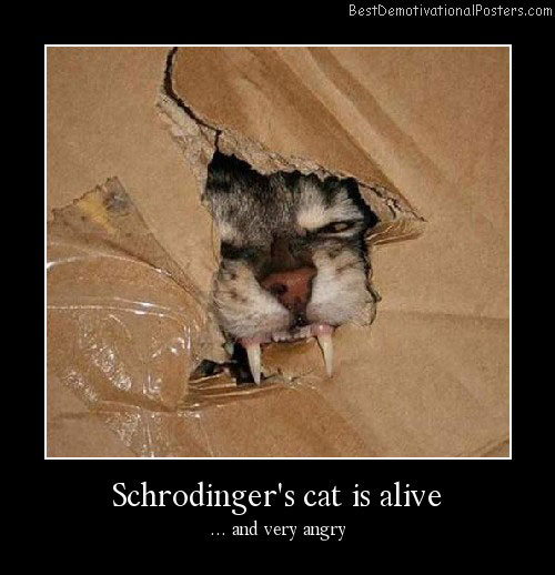 Schrodinger's-cat-is-alive Best Demotivational Posters