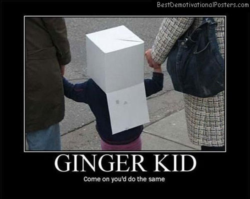 ginger_kid best demotivational posters