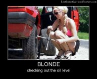 Blondes And Cars