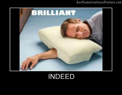 Brilliant Pillow Best Demotivational Posters