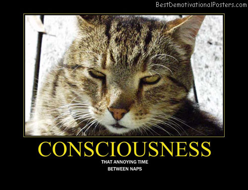 Consciousness Best Demotivational Posters