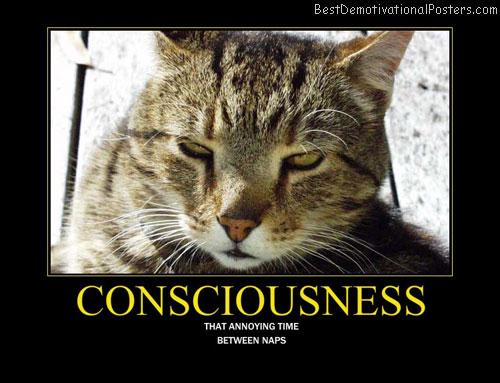 Consciousness Best Demotivational Posters