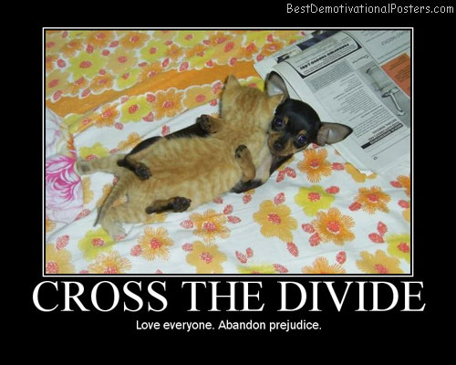 Cross The Divide Best Demotivational Posters