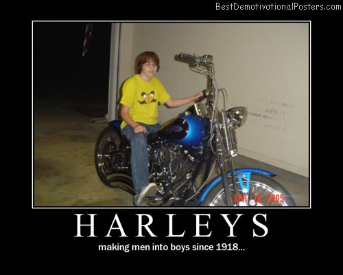 Harleys Style Best Demotivational Posters