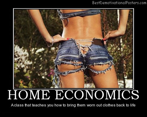 Home Economics Best Demotivational Posters