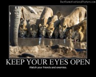 Keep Your Eyes Open Best Demotivational Posters