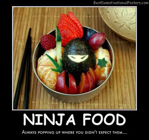 Ninja Food Best Demotivational Posters