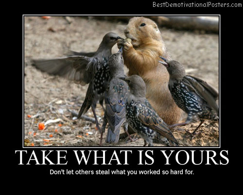 Take What Is Yours Best Demotivational Posters