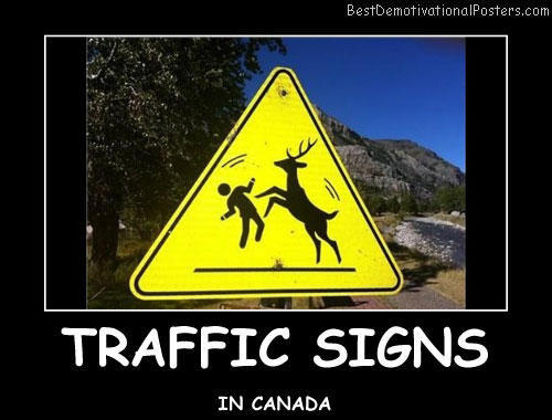 Traffic Signs Best Demotivational Posters