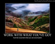 Work With What You've Got