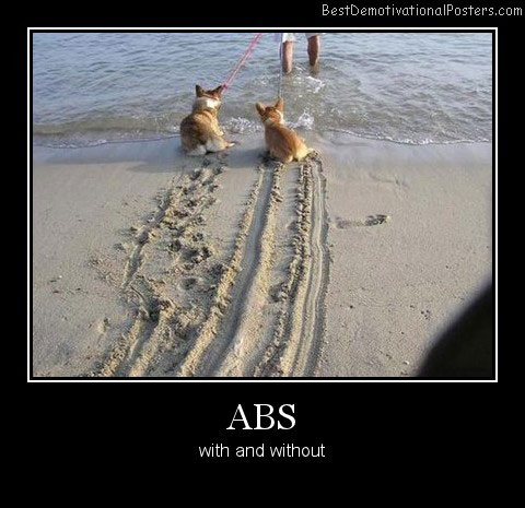 ABS With And Without Best Demotivational Posters