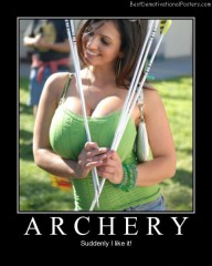 Archery Best Demotivational Posters