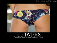 Flowers Best Demotivational Posters