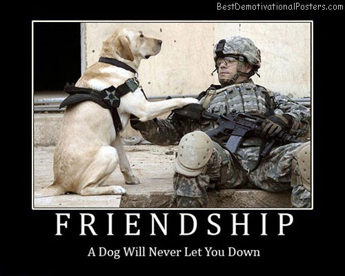 Friendship Dog Best Demotivational Posters