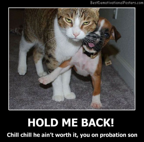 Hold Me Back Best Demotivational Posters