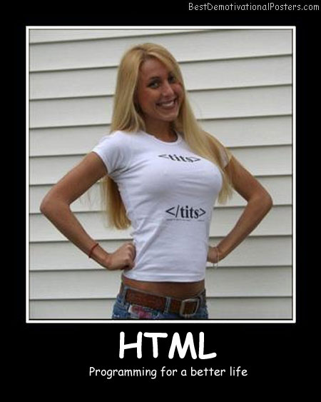 Html programming Best Demotivational Posters